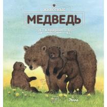 Животные в природе. Медведь.