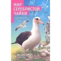 Мир серебристой чайки