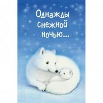Однажды снежной ночью