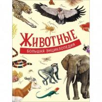 Литвинова Д. А. Животные....