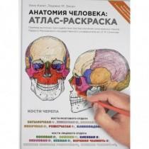 Анатомия человека:...