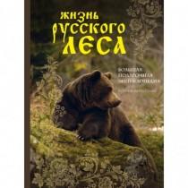 Жизнь  русского  леса...