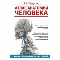 Атлас анатомии человека....