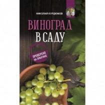 Виноград в саду. Проверено...