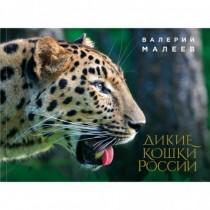 Дикие кошки России:...