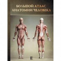 Большой атлас анатомии...